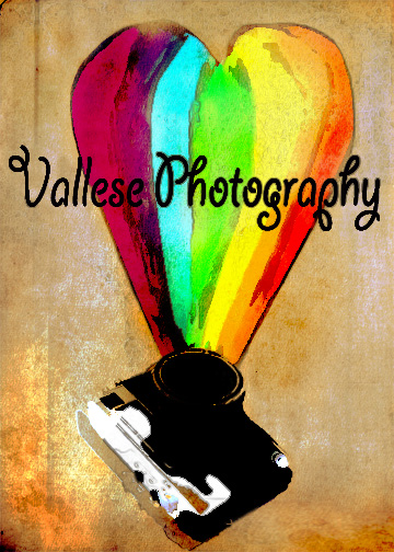 Vallese Photography